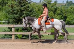 JBC_6035.jpg (Jim Babbage) Tags: krahc bethany appaloosa horses horseshow 2018
