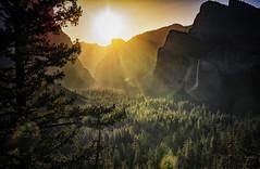 Tunnel View Sunrise (gjim9beam) Tags: sunrise mountains yosemite trees california