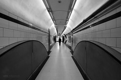 Tunnel Vision at Queensway Station (Luke Agbaimoni (last rounds)) Tags: london londonunderground londontube train transportforlondon trains blackandwhite