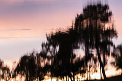 Reflections of sunset (OzzRod) Tags: pentax k3 hdpentaxdfa150450mmf4556 sunset sky reflection ripples murrah river trees farsouthcoast nsw pentaxart