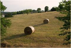 HeuErnte (in explore) (Niemann-Buuts) Tags: weide sachsen doebeln heu heuballen sommer