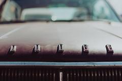 d  o  d  g  e   l  2018 (weddelbrooklyn) Tags: hamburg streetmagshow streetmagshowhamburg car cars classiccars oldtimer uscars uscar nikon d5200 35mm auto autos classiccar dodge schriftzuf motorhaube chrome hood enginecowling