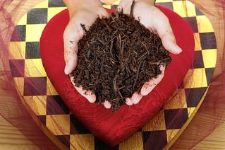 159/365 Love Mulch
