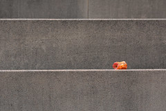 Resten op beton (aj.lindeboom) Tags: minimalisme pollutotion appel beton concrete stairs grijs abstract
