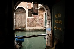 Favorite Place in Venice. (discoveyvans) Tags: venice library water book explore travel italy cats canals boats