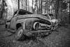 Fire Hazard (Wayne Stadler Photography) Tags: abandoned preserved junkyard georgia classic automotive derelict overgrown vehiclesrust rusty retro vintage oldcarcity rustographer rustography white