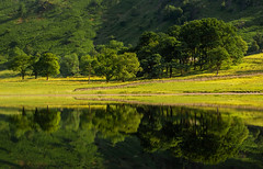 Summer Breeze........ (urfnick) Tags: woods green trees leaves grass foliage reflections mirror nature flora fauna outdoors landscape scenery countryside water lake tarn pond nationalpark cumbria canon eos 1300d tamron zomeicpl sunlight summer mountain crag cliffs rocks stones mountainside england united kingdom light