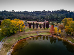 Autumn Colours (Michael Rawle) Tags: leaves table drone picnic tree bluemountains katoomba water things mountains park lake trees places autumn newsouthwales australia au