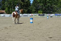 DSC_4076 (Primespot Photography) Tags: show horseshow horse horses game games horsegames flag