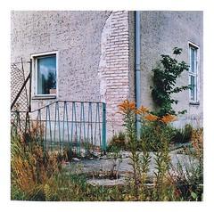 o.T. (mikeschwemm) Tags: analog urban mittelformat rollfilm façade