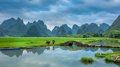 GL-9796 (Kwakc) Tags: guilin guilinshi guangxizhuangzuzizhiqu china cn yangshuo
