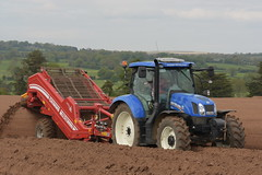 New Holland T6.175 Tractor with a Grimme Rota Power CS150 Destoner (Shane Casey CK25) Tags: new holland t6175 tractor grimme rota power cs150 destoner fermoy traktor traktori tracteur trekker trator ciągnik potato potatoes spuds spud tatties sow sowing set setting drill drilling tillage till tilling plant planting crop crops cereal cereals county cork ireland irish farm farmer farming agri agriculture contractor field ground soil dirt earth dust work working horse horsepower hp pull pulling machine machinery grow growing nikon d7200