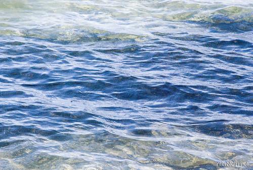 Шацький Національний Природний Парк Озеро Пісочне Прозора вода InterNetri  Ukraine 283