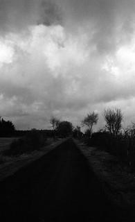 Road into the dark