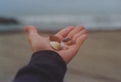 Maybe you were the ocean (Rose Claw) Tags: sea film kodak seaside shore mood aesthetic offseason grey stormy rainy rain intimate humanless