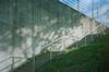 a big tree on the wall (Kenji Kitae) Tags: tree shadow stairs road green sky blue daily lifestyle lifework landscape location nature earth japan hiroshima