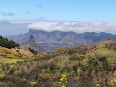 Senderismo Ruta desde Pico de las Nieves a Cueva Grande Gran Canaria  10 (Rafael Gomez - http://micamara.es) Tags: senderismo ruta desde pico de las nieves cueva grande gran canaria
