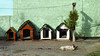 09:39 / 23º C (To-an--) Tags: doghouse dog green brazil brasil santa catarina sc florianópolis