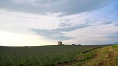 Réveil des lavandes (Baptiste [R.]) Tags: lavande lavender valensole provence ciel sky nuage cloud champs field spring printemps blue bleu green vert sunset couché de soleil cabanon pigeonnier