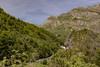 7850 (tonygimenez) Tags: bosque rio agua naturaleza valles montaña cascadas niene