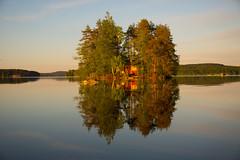 Sunset reflection (talaakso) Tags: auringonlasku finnishlandscape järvi kukkia nikkor28300 nikond610 solnedgång sonnenuntergang sunset terolaakso heijastukset kesä lake lakelandscape mökki reflection reflections reflexion stuga summer summerlandscape talaakso d610