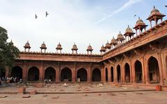 fatehpur sikri birds (kexi) Tags: india asia uttarpradesh fatehpursikri mosque old ancient akbar mughal colonnade birds red sandstone canon february 2017
