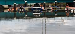 River Lagan (Julie McGovern) Tags: belfast coantrimcity bluefish