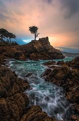 Lonely Cypress Tree (Chris Ewen Crosby) Tags: monterey lone cypress tree 17 mile drive seascape landscape longexposure long expo sunrise ocean sea sunset