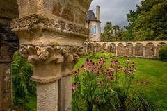 Abbaye de Daoulas (Faouic) Tags: france bretagne finistère daoulas cloître abbaye