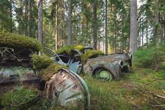 S a a g e o t (mariburg) Tags: rotten marode forgotten ruin decay desolate derelict cars rustycars auto canoneos6d canonef1635mmf4lisusm saab peugeot