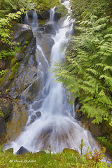 Life blood of the earth (littlebiddle) Tags: mtrainiernationalpark water waterfall flowing