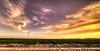 Freshly cut flowers. (Alex-de-Haas) Tags: 11mm adobe blackstone d850 dutch hdr holland irix irix11mm irixblackstone lightroom nederland nederlands netherlands nikon nikond850 noordholland photomatix beautiful beauty bloem bloemen bloementeelt bloemenvelden cirrus floriculture flower flowerfields flowers landscape landschaft landschap lente lucht mooi polder skies sky spring sun sundown sunset zonsondergang