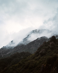 new zealand-6 (brody_d_webb) Tags: newzealand purenewzealand nzmustdo juicy snow mountains landscapes instagram beautiful destinations