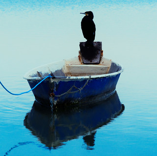 En couleur Méditerranée.
