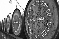 Single Malt 1608 (efgepe) Tags: irland lightroom mai pentaxk1 nord nordirland northernirelands bushmills whiskey bw sw singlemalt fass fässer jar oldbushmills blackwhite schwarzweiss distillery