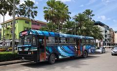Borneo Bus (BiggestWoo) Tags: bus borneo malaysia sibu sarawak terminus palm tree stop