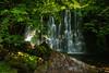 Scale Haw Falls (andythomas390) Tags: scalehawfalls waterfall woods hebden trees le leepolariser nikon d7200 18200mm