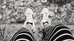 I slipped down the channel bank. (BarbaraBonanno BNNRRB) Tags: feet river