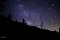 Backpacking Milky Way (NormFox) Tags: astrophotography backcountry backpacking california cleosbath forest milkyway outdoor pinecrestlake sky stars trees pinecrest unitedstates us