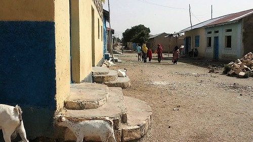 Street view of the house in Borama