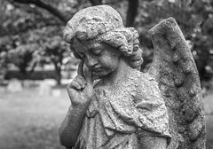 Forgotten Angel (f_gray1) Tags: forgotten neglected weathered angel religion religious headstone grave graveyard goth gothic monochrome photo photography death statue