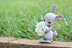 Bunbun (AluminumDryad) Tags: cocoriang tobi anthrobjd bjd balljointeddoll doll resin toy bunny flowers