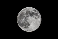 Full Moon (www.endlessfields.ch) Tags: fullmoon moon landscape landscapephotography astrophotography amazing mond vollmond schweiz 29 mai 2017 astro sigma 600mm teleconverter closeup fascinating trippy nightphotography mindblowing