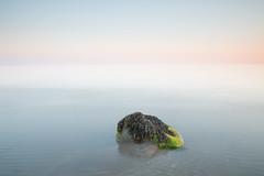 Horizon fade (jillyspoon) Tags: rock canon light evening calm dusk long exposure longexposure coast sea southwestscotland scotland sunset blue canon70d eos seaweed tranquil seascape seaside
