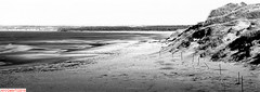 Brackley Beach, PEI (DelioTO) Tags: 4x5 blackwhite canada cropped d23 f317 lake landscape natparks pei pinhole rain fomapan rural winter