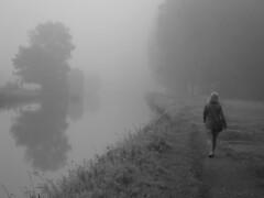 (Jean-Luc Léopoldi) Tags: brouillard bw noiretblanc fog femme rivière reflection arbres trees chemindehalage towpath mist brume walk woman