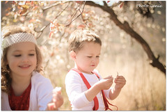 Siblings (Photo-Genie SA) Tags: siblings brother sister family spring flower blossom soft lovely blond child children play alive canon 50mm outside