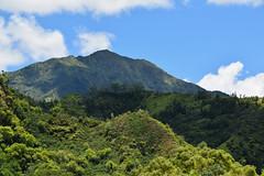 DSC33_18558 (heartinhawaii) Tags: mountain makana makanarange hanalei princeville kauai hawaii landscape mountainscape lush green nature nikond3300