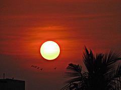 A Pleasant Start At 6.15 am.... (sureba67) Tags: sunrise skywatch nature photography sonydsch200 dawn sureba67 babusuresh niftybaba