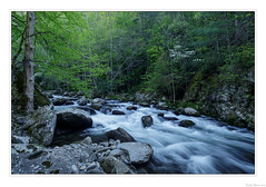 Middle Prong Spring (John Cothron) Tags: americansouth cpl cothronphotography distagon2128ze distagont2821ze dixie eastsouthcentralstates georgiaphotographer greatsmokymountainnationalpark johncothron middlepronglittleriver seviercounty sevierville southernregion tennessee thesouth tremont us usa usaphotography unitedstatesofamerica volunteerstate zeissdistagont2821ze afternoonlight circularpolarizingfilter clearsky creek flowing forest freshwater landscape longexposure moss nature outdoor outside river rock scenic spring stream sunny vegetation water 257175d4180430coweb6152018 ©johncothron2018 middleprongspring